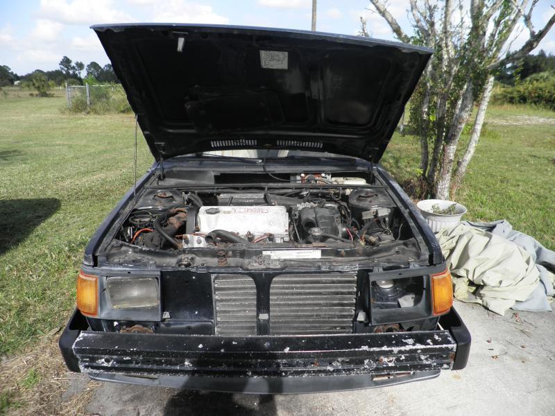 1986 Dodge  omni glhs - 00 firm-066.jpg