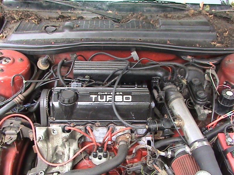 1987 Dodge Daytona Shelby Z -  850 Firm
