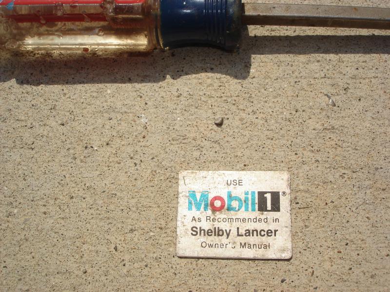 Shelby Lancer-dsc00737.jpg