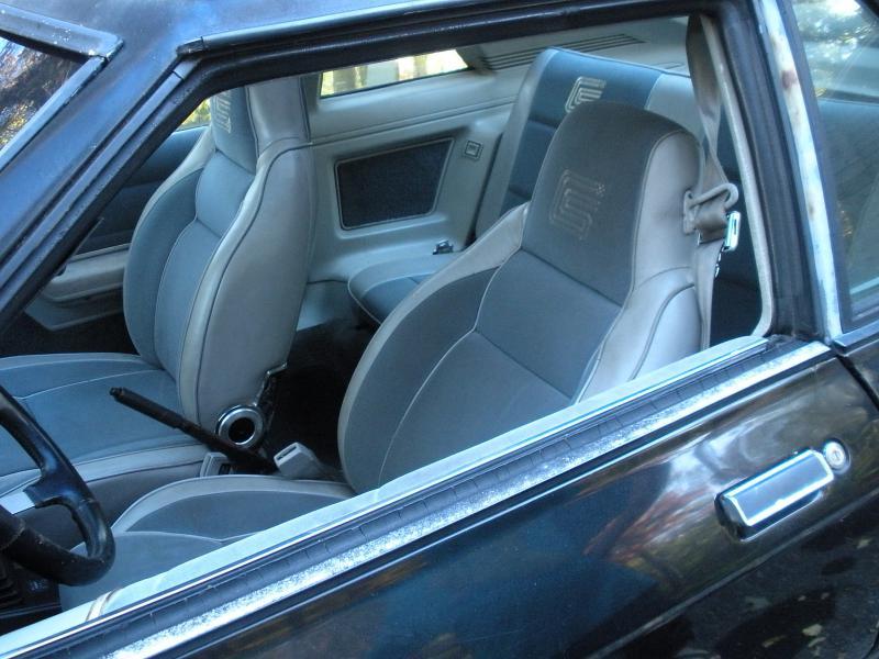 1987 Dodge Shelby Charger GLHS - 00 OBO-dscn1263.jpg