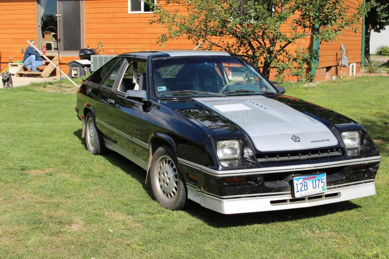1985 Dodge Charger Shelby 2 2 For Sale
